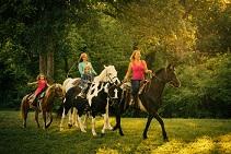 lovas programok Sopronban