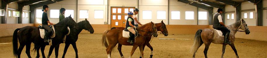 Vadon Horse Club